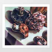 Medicinal Mushrooms  Art Print