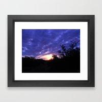 The Morning Glory  Framed Art Print