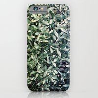 iPhone & iPod Case featuring leaves by angelenka