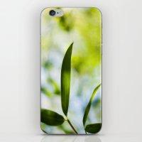 Bamboo Leaf iPhone & iPod Skin