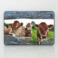 The Other Side Of The Fence iPad Case