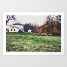 sheep farm Art Print