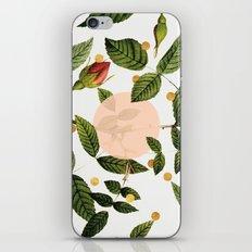 Leaves + Dots iPhone & iPod Skin