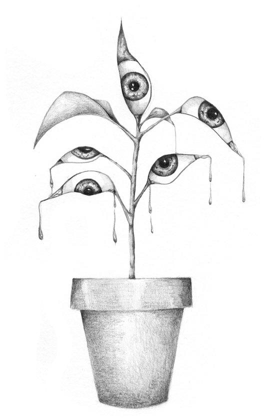 planta Art Print
