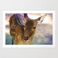 Portrait of Baby Deer Art Print