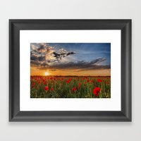 Poppy Vulcan Framed Art Print