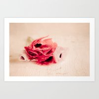 The Poppies Art Print