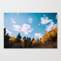 fern lake trails .  Canvas Print