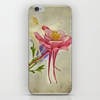 Summer Song  iPhone & iPod Skin