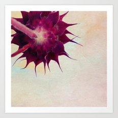 pink sunflower Art Print