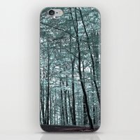 cold forest VI iPhone & iPod Skin