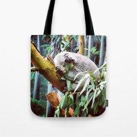 Kozy Koala  Tote Bag