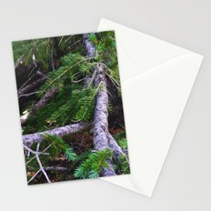 Expand Stationery Cards