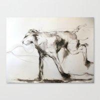 The Wild One Canvas Print
