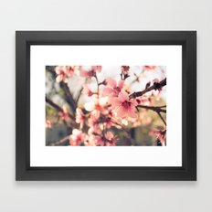 Spring has come 2 Framed Art Print