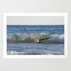 Fly Away Gull 6950 Art Print
