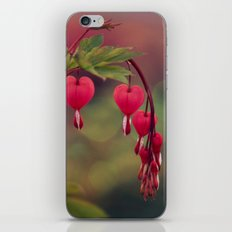 love comes again iPhone & iPod Skin