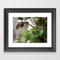 Pandora Framed Art Print