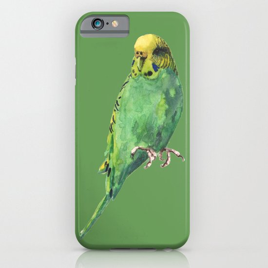 Budgie, parakeet, budgerigar, whos a pretty boy then, bird art iPhone & iPod Case