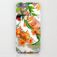 Hummingbirds and Trumpet Vines iPhone 6 Slim Case