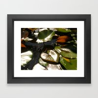 Frog and Lotus Leaves Framed Art Print