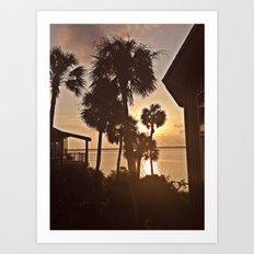 Palm Tree Silhouettes  Art Print