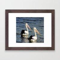 Pelican Pals Framed Art Print