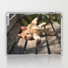 Stretching Laptop & iPad Skin