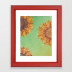 Asteraceae Framed Art Print