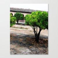 Courtyard Canvas Print