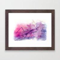 Mantis P. Framed Art Print