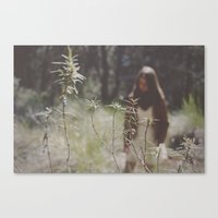 lost in woodland Canvas Print