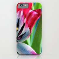 iPhone & iPod Case featuring Pink and White Tulip by Alice Price