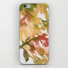 Morning Blossoms 2 - Olive Variation iPhone & iPod Skin