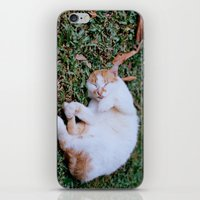 Sleepy Cat iPhone & iPod Skin