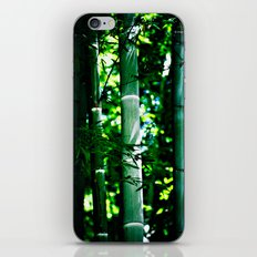 Bamboo Forest iPhone & iPod Skin