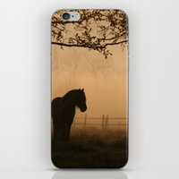 a pony iPhone & iPod Skin