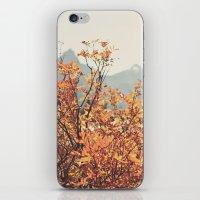 Mountain Lodge iPhone & iPod Skin