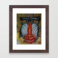 Baboon Framed Art Print