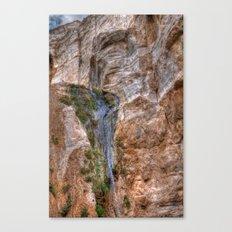 Cliffs of Israel Waterfall Series #5 Canvas Print