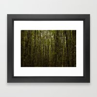 Forest For Trees Framed Art Print