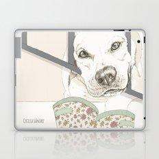 Pipo Laptop & iPad Skin