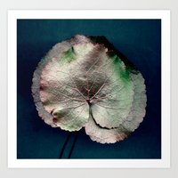'Scanned Leaves' Art Print