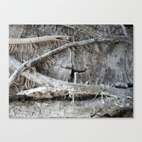 Wood Love Ivy  Canvas Print
