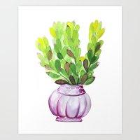 Succulent Vase Art Print
