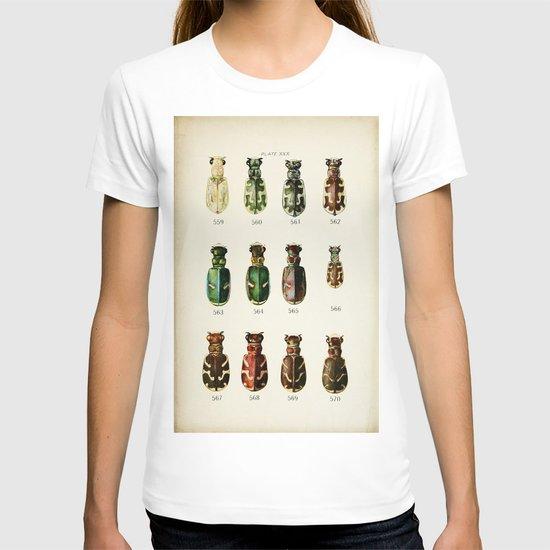 Ornate Beetles  T-shirt