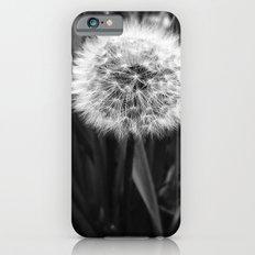 'DANDELION - MAKE WISH' iPhone 6s Slim Case