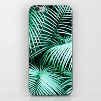 Palms iPhone & iPod Skin