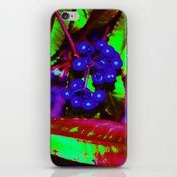WONKA Berries iPhone & iPod Skin