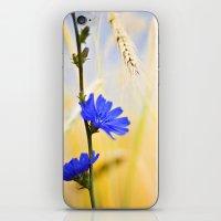 Periwinkle iPhone & iPod Skin